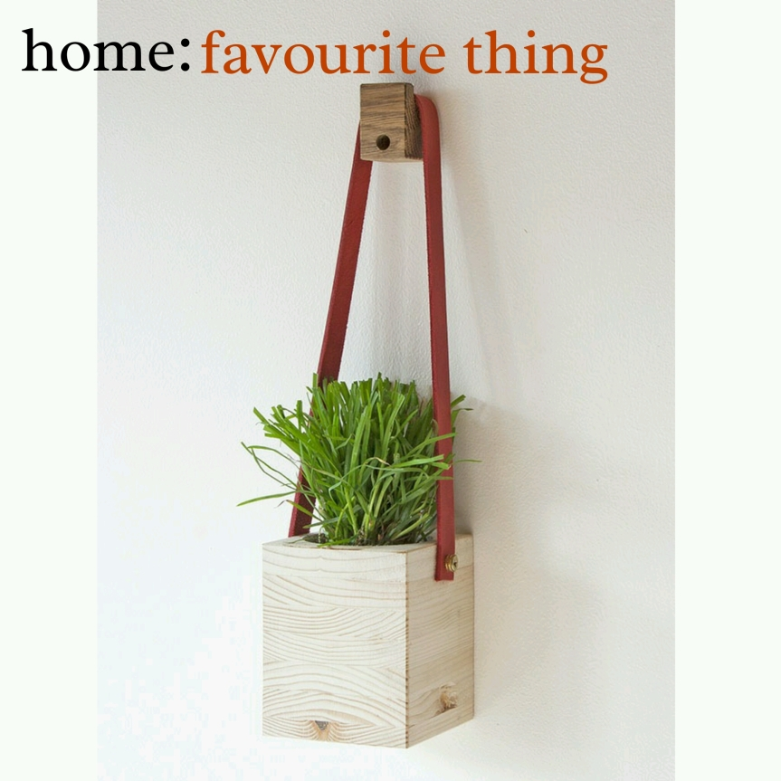 home: favourite thing [ planter]