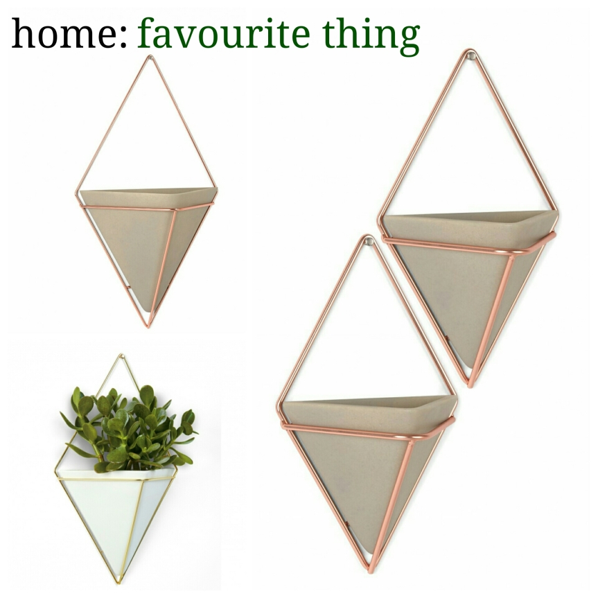 home: favourite thing [ wall vessel]