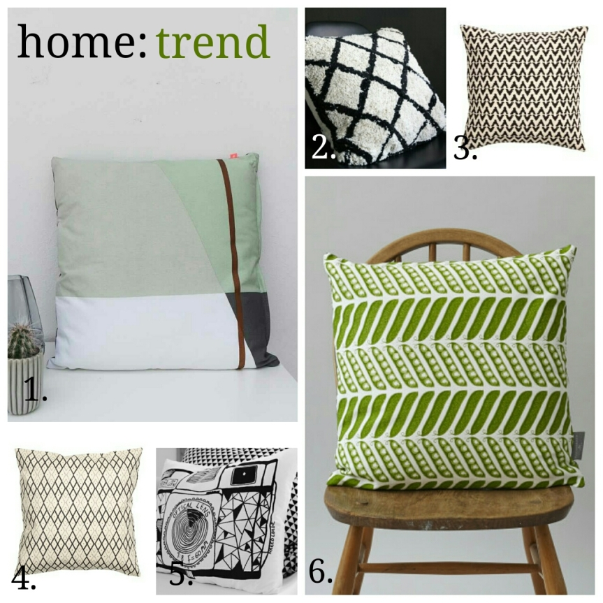home: trend [ graphic cushion ]