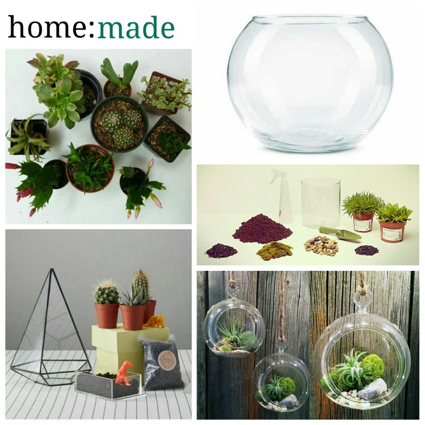 home: made [ terrarium]
