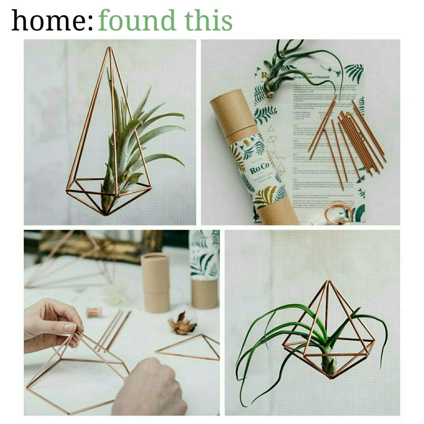 home: found this [ plant hanger ]