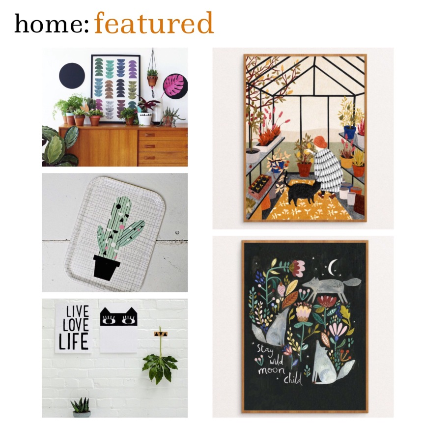 home: featured [ Seventy Tree ]