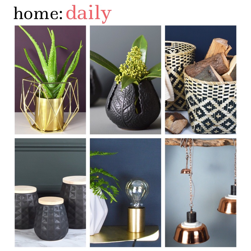 home: daily [ sale ]