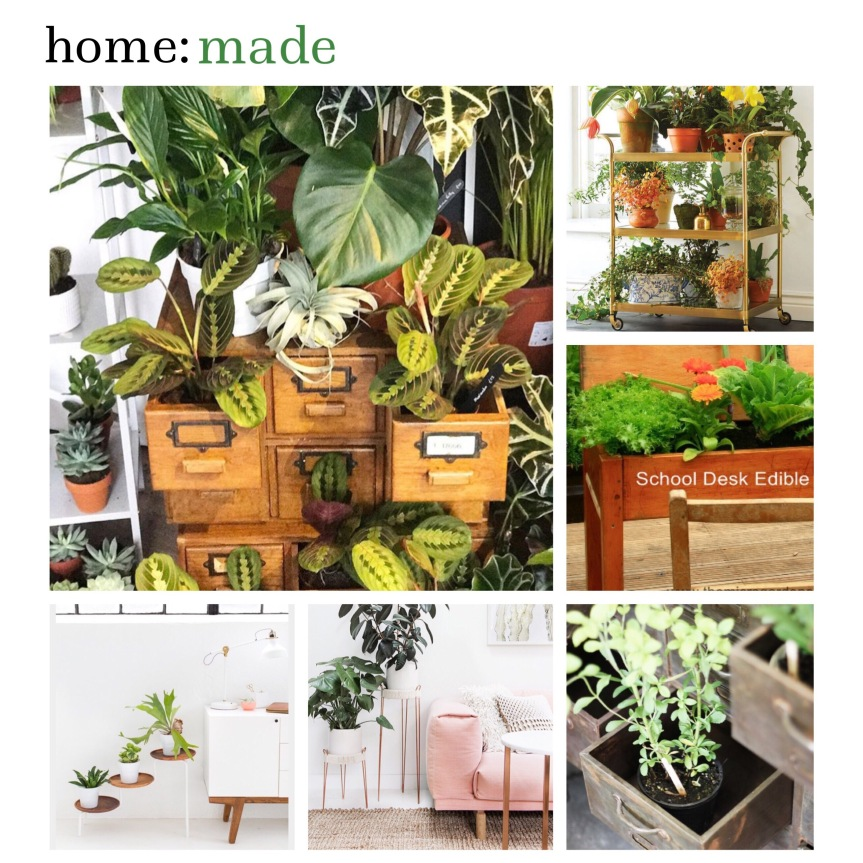 home: made [ plant pots and plant stands ]