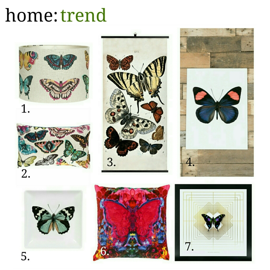 home: trend [ Butterflies ]