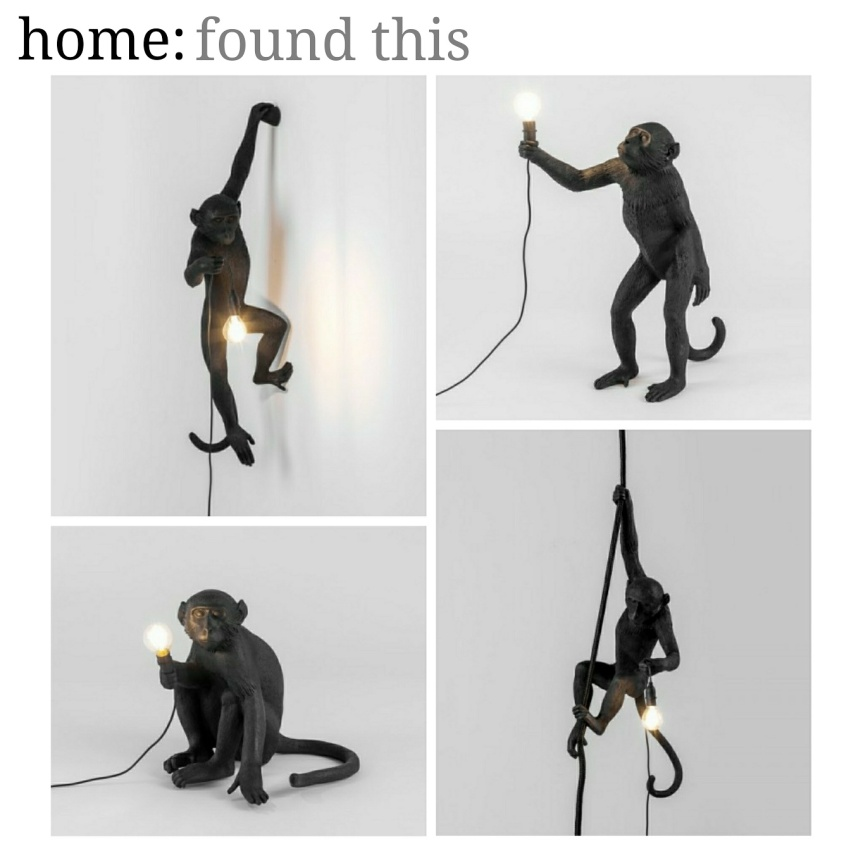 home: found this [ monkey lights ]