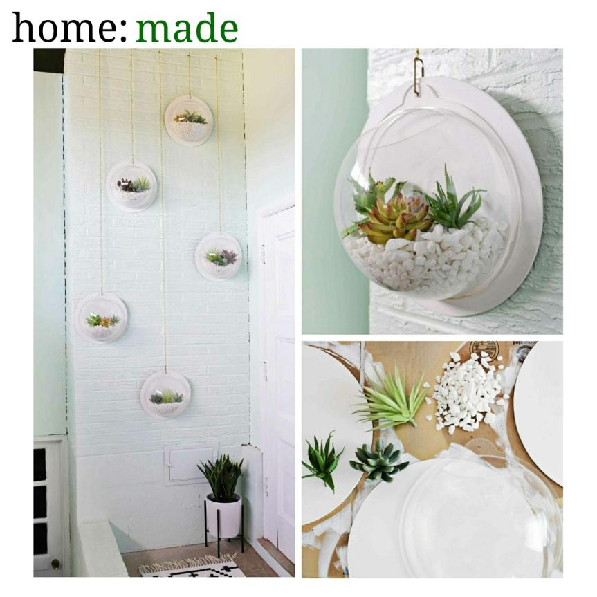 home: made [ hanging terrarium]
