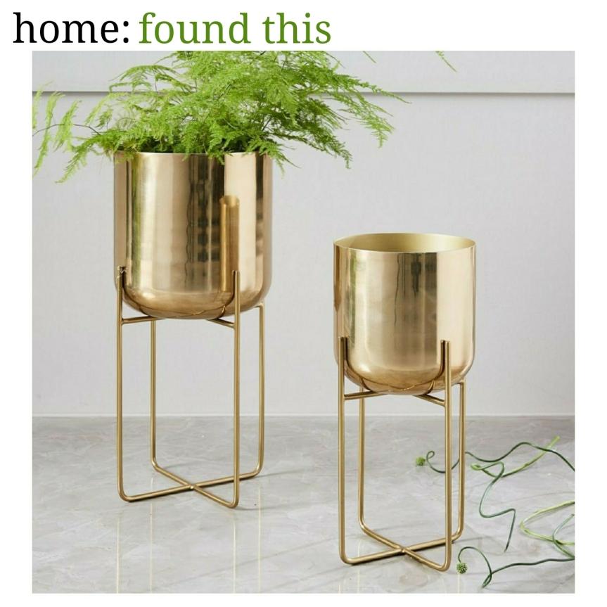 home: found this [ planter]