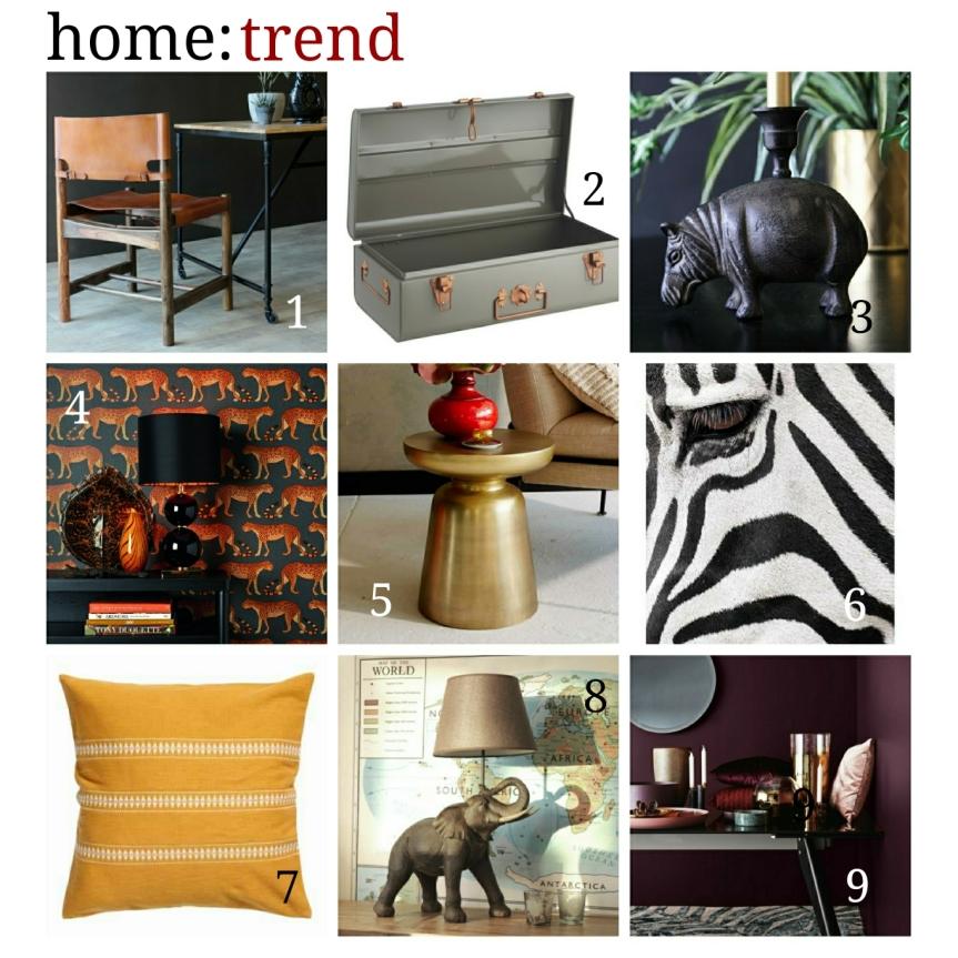 home: trend [ safari]