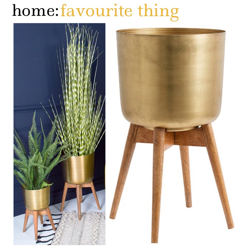 home: favourite thing [ indoor planter ]