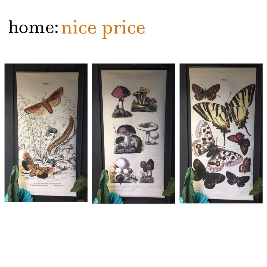 home: nice price [ wall hangings ]