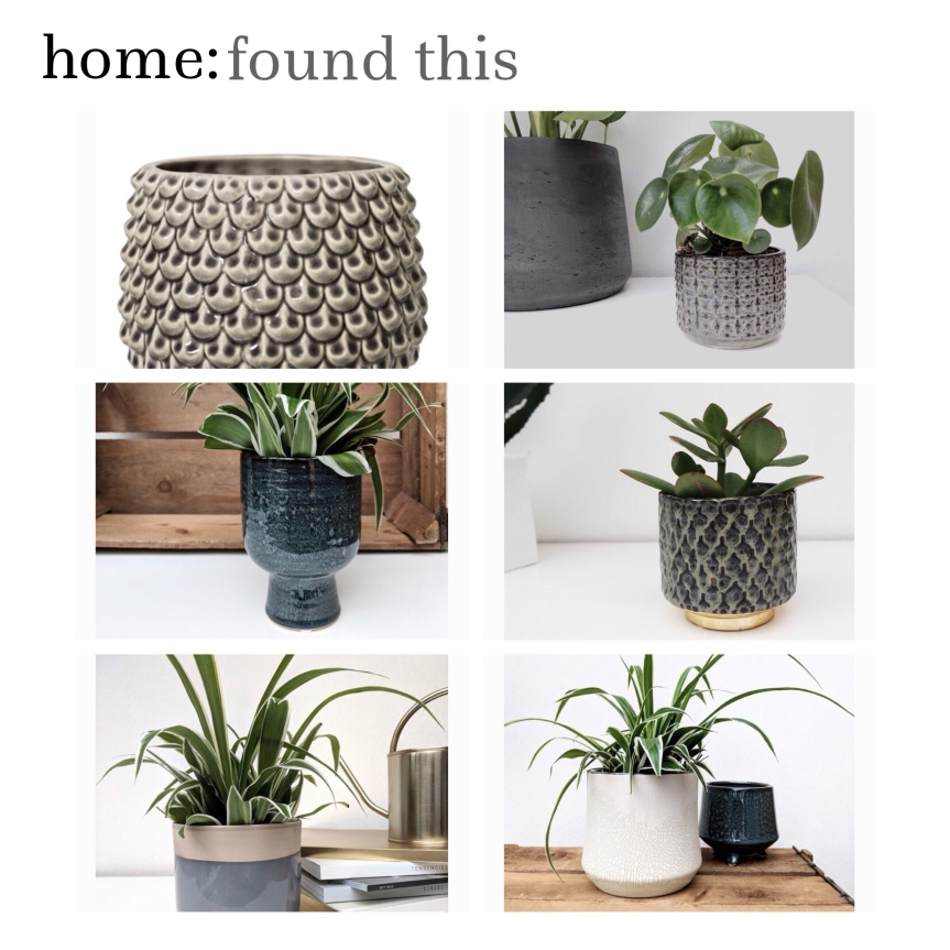 home: found this [ plant pots ]