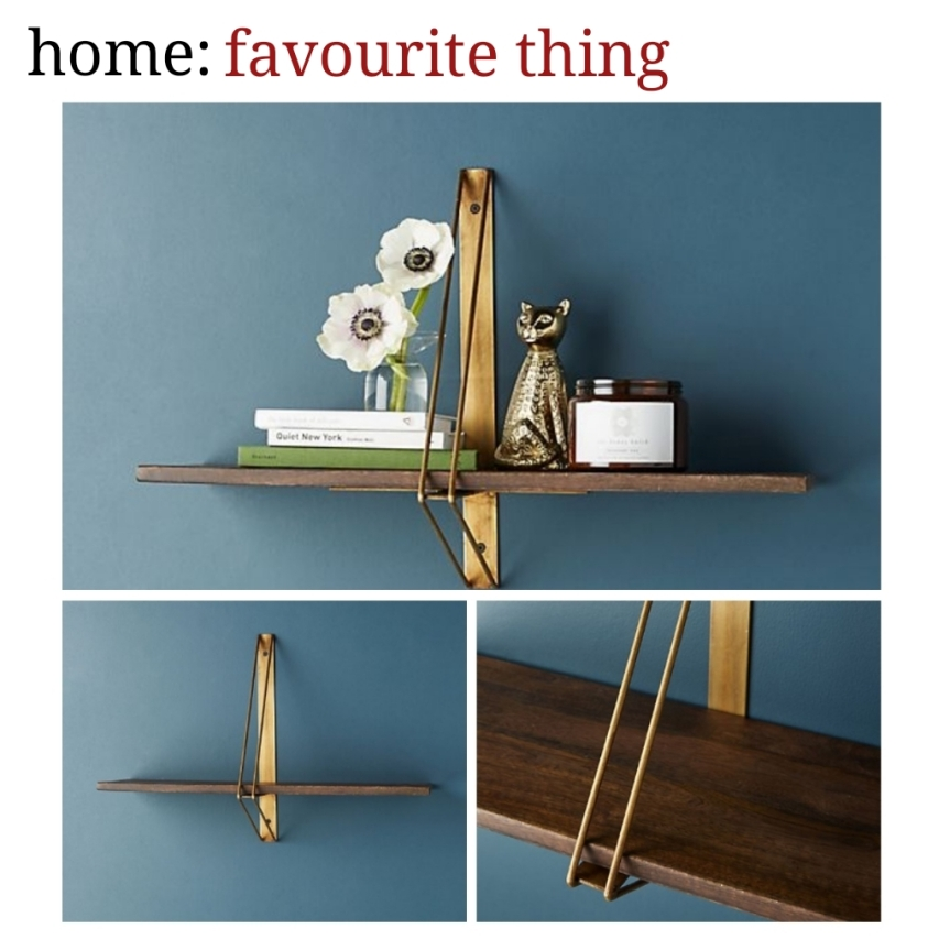 home: favourite thing [ shelf ]