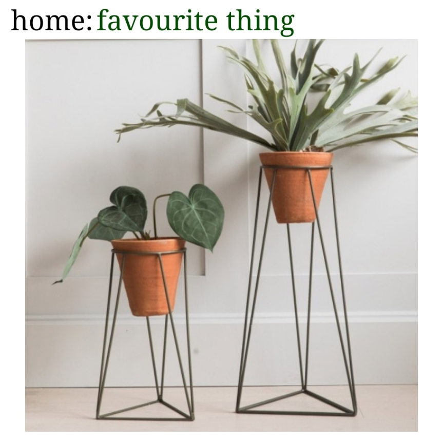 home: favourite thing [ plant stands ]