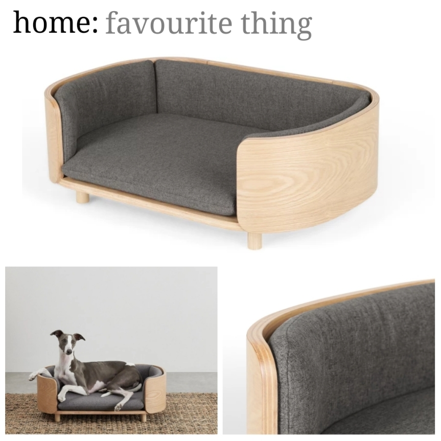home: favourite thing [ dog bed ]