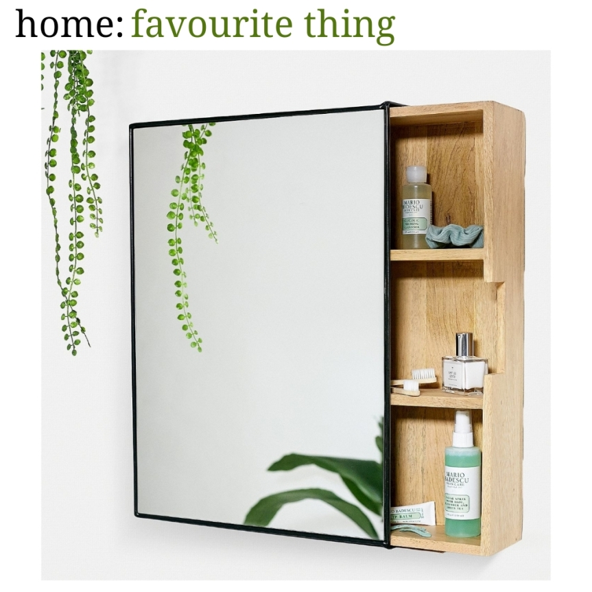 home: favourite thing [ mirror cabinet ]