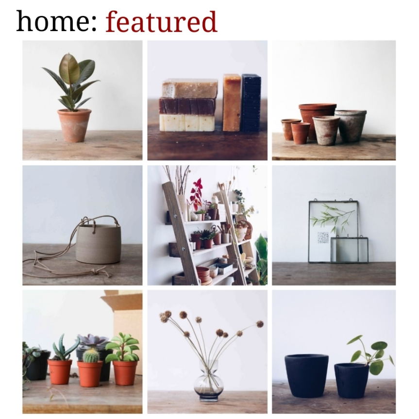 home: featured [ Botany]