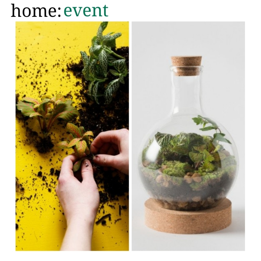 home: event [ terrarium workshop ]