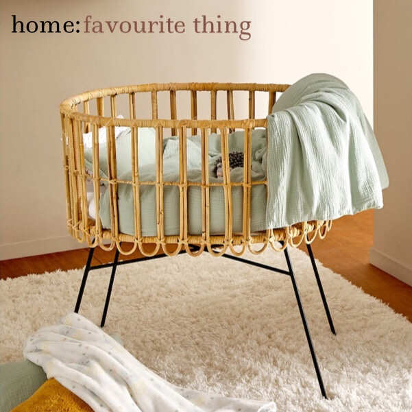 home: favourite thing [ moses basket]