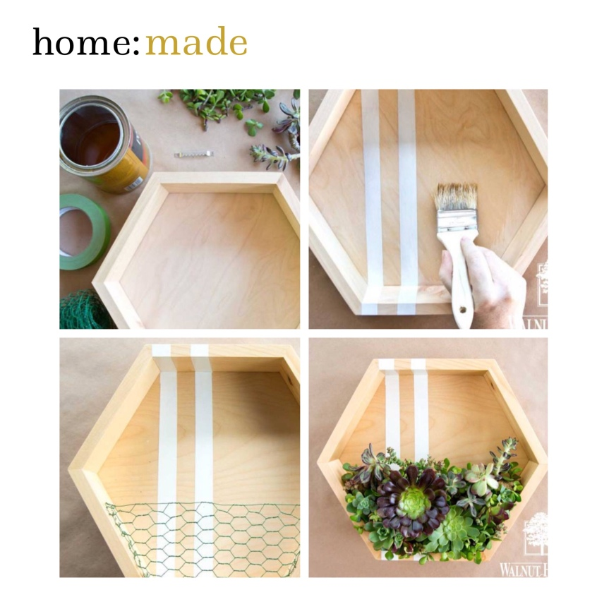 home: made [ wooden succulent holder ]