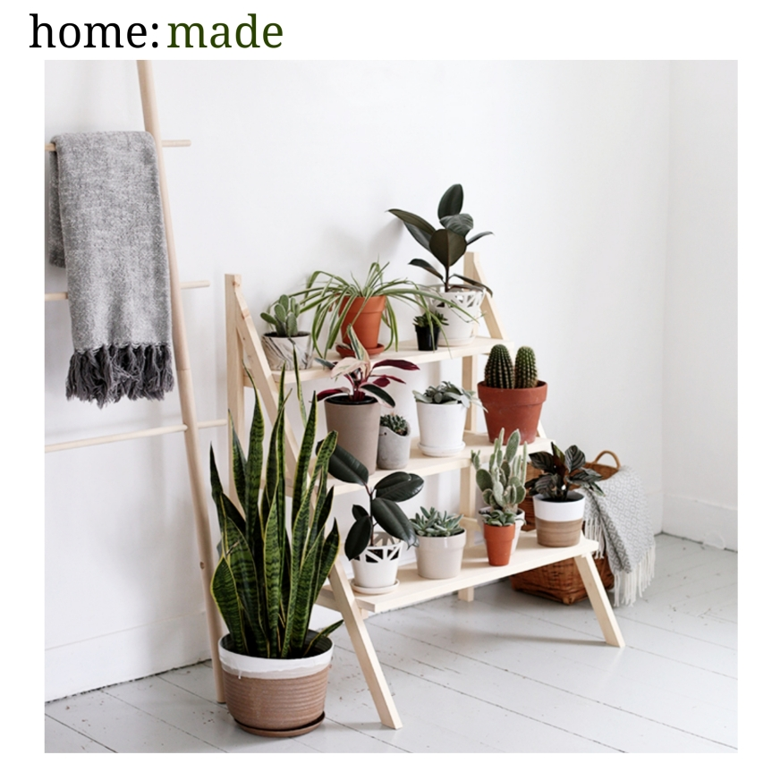 home: made [ plant ladder ]