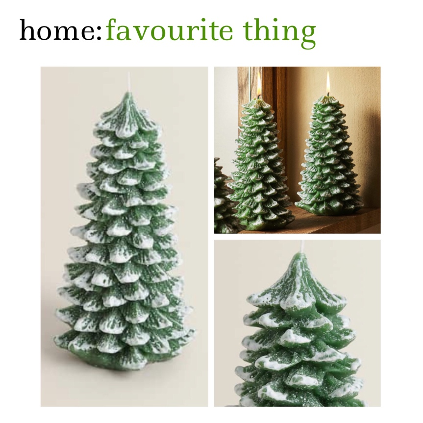 home: favourite thing [ tree candles ]