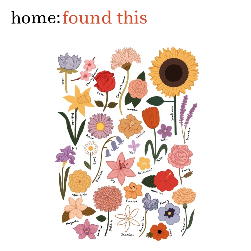 home: found this [ flower print ]