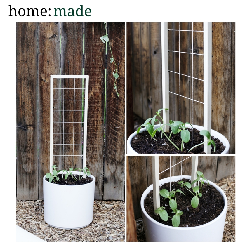 home: made [ mini trellis ]