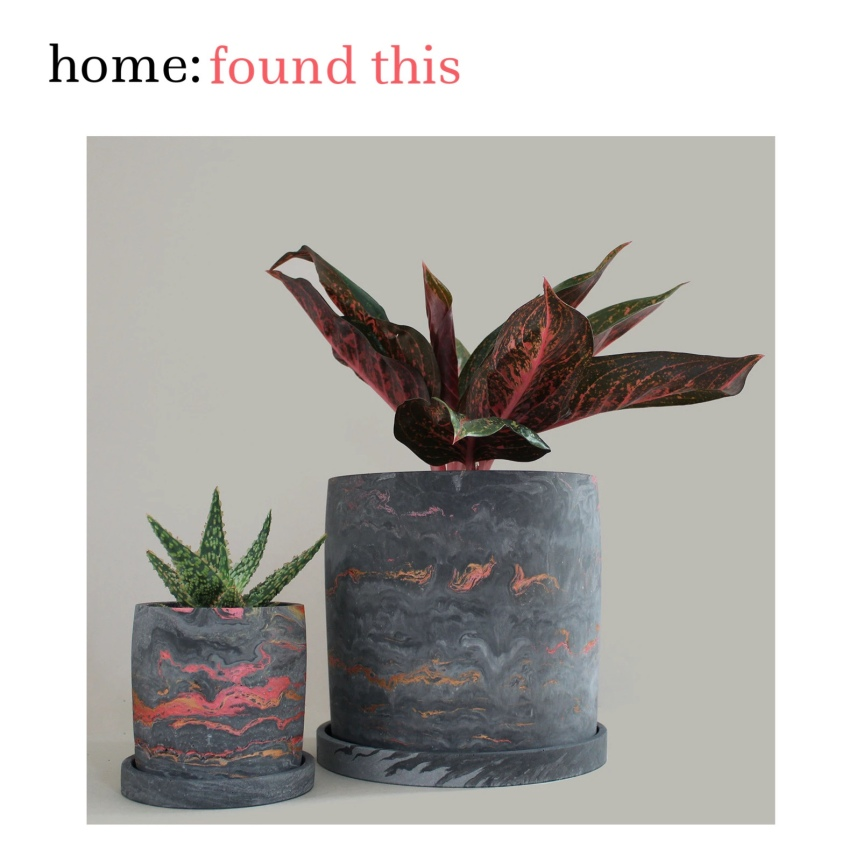 home: found this [ plant pot]